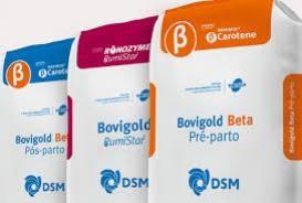 DSM leva suplementos que aumentam a produção e a qualidade do leite para a Megaleite